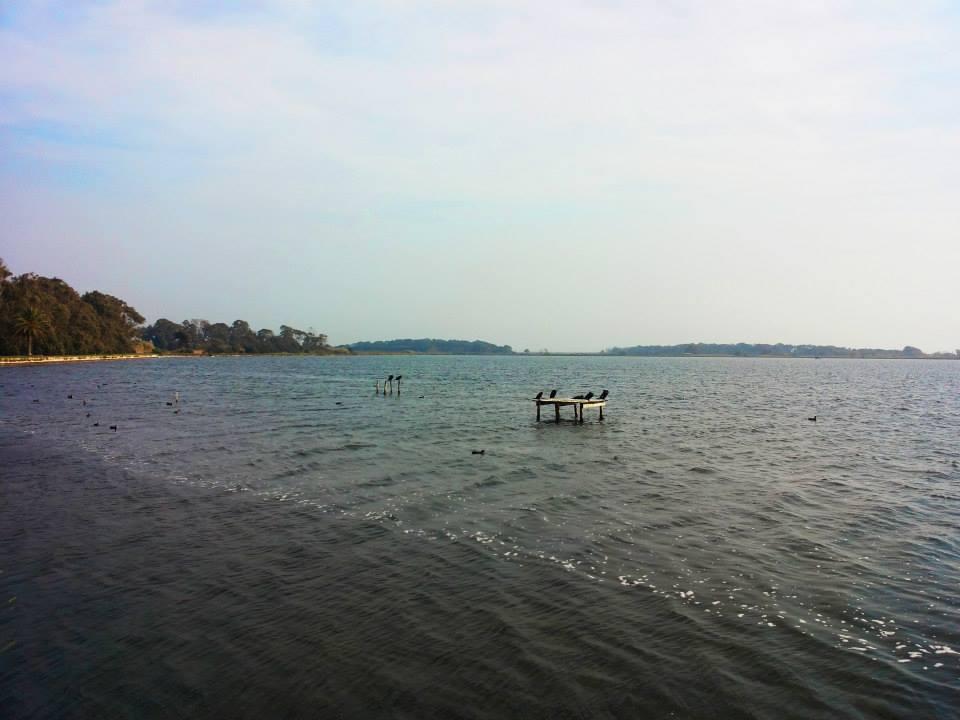 Lago di Fogliano - birdwatching - foto credits: Katarzyna Leszczynska