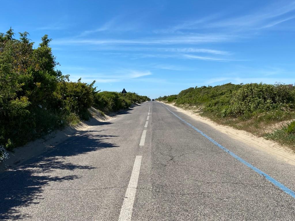 La strada che percorre la sommità della Duna Litoranea alle spalle della spiaggia di Sabaudia. Ricca di vegetazione, separa la spiaggia dai laghi costieri alle sue spallle.