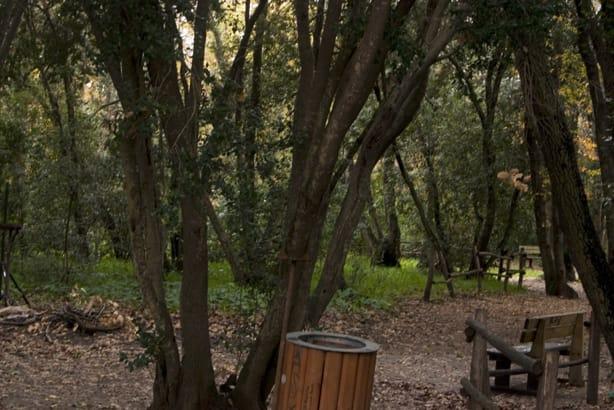 Area dell'Oasi di Palo Laziale