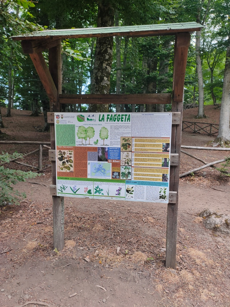 La Faggeta del Monte Cimino - Ingresso all'area verde